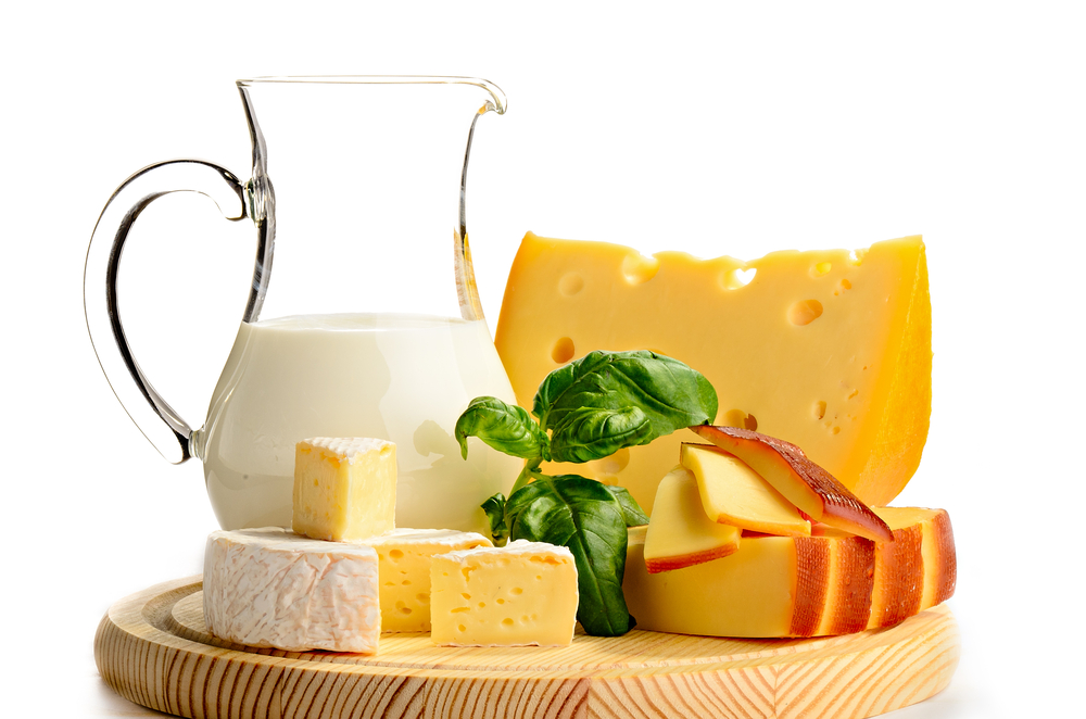 dairy products rich in calcium