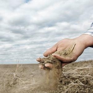 141b dry soil