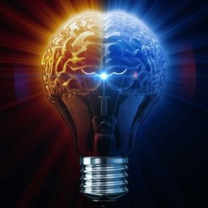 light bulb with brain showing synapses bright idea