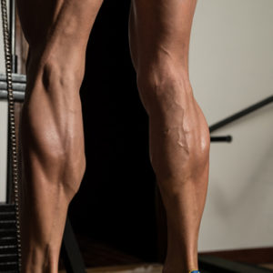 defined muscular calves