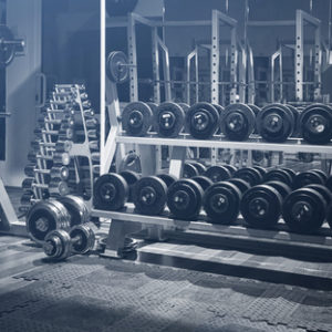 set of free weights in the gym dumbbells