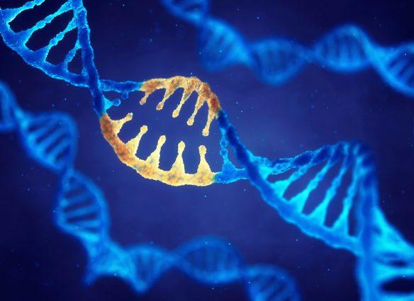 Healthy DNA